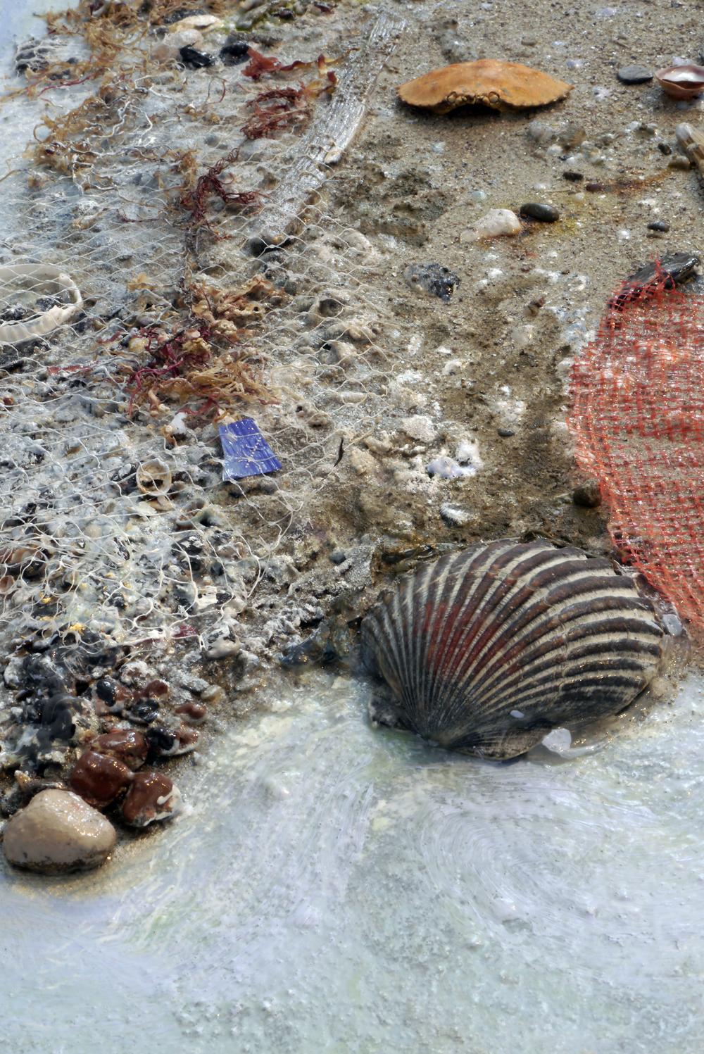 """Detail: """"Shoreline #10: Sandbar"""