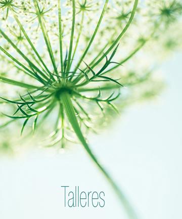 Talleres.jpg