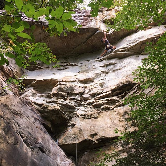 Last week I sent a new grade and got a new high point on a long term project. PSYCHE IS STRONG  Equinox, 5.12b, South Clear  Obed, TN  @elmagneffico and @slothvibes8b on the belay, pic and the STOKE  #rockclimbing #rocks #obed #southclear #tennessee #theobedisamagicalplace #theresortgoeswhereyougo #rekindlethestoke