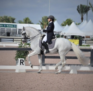 Heather  Bender  - Treasure Coast Dressage                  561-596-1519 www.Heather Bender.com