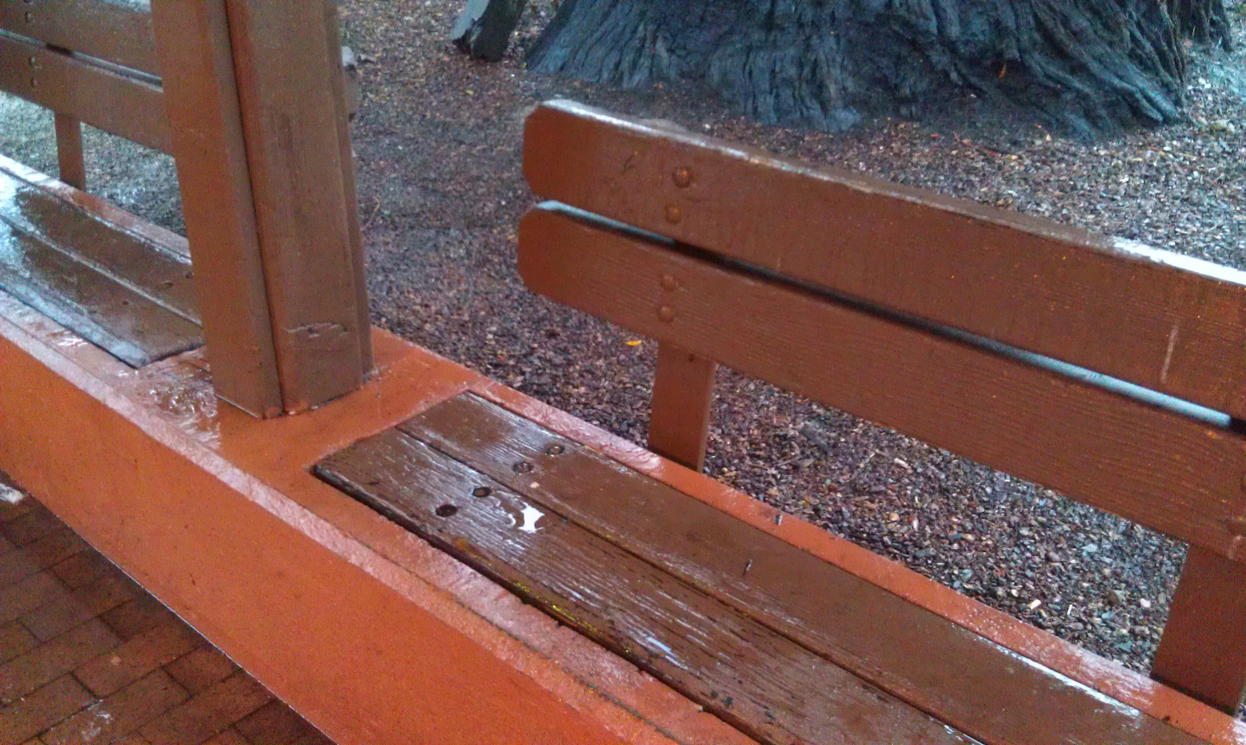 A soaked bench at the Depot. Image by the author.