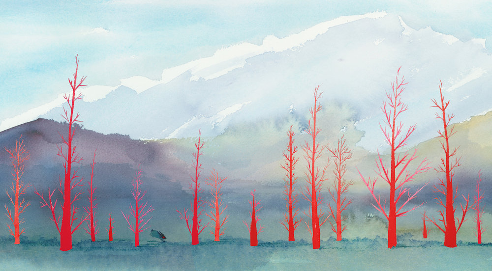 CindyDerby_Forest_Red.jpg