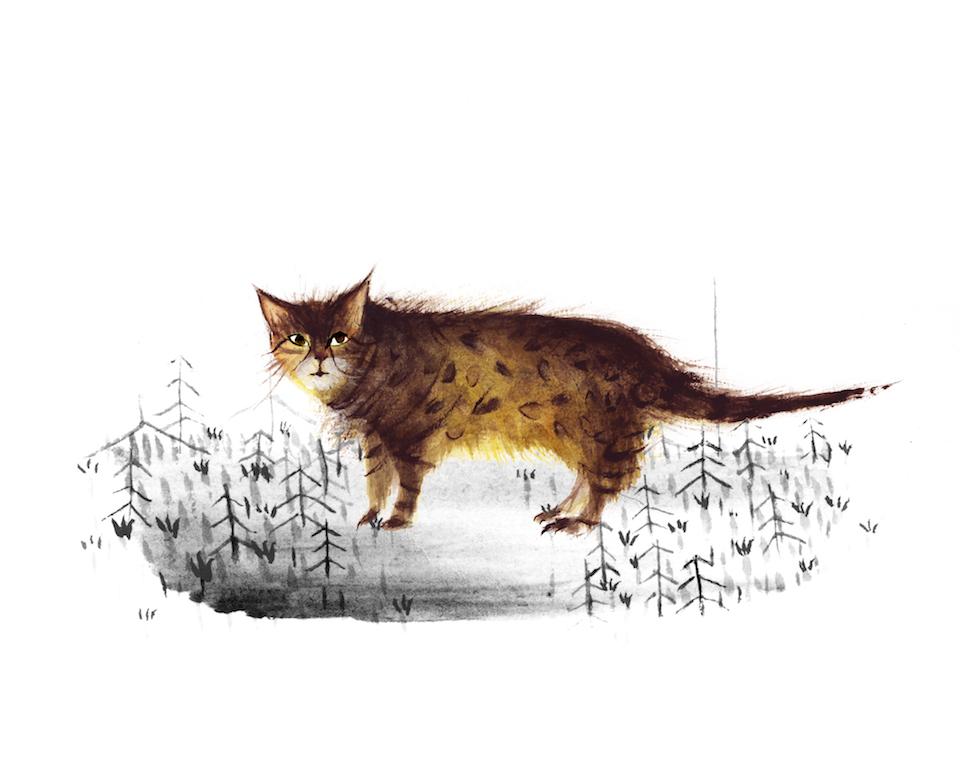 cat_Blackandwhite.jpg