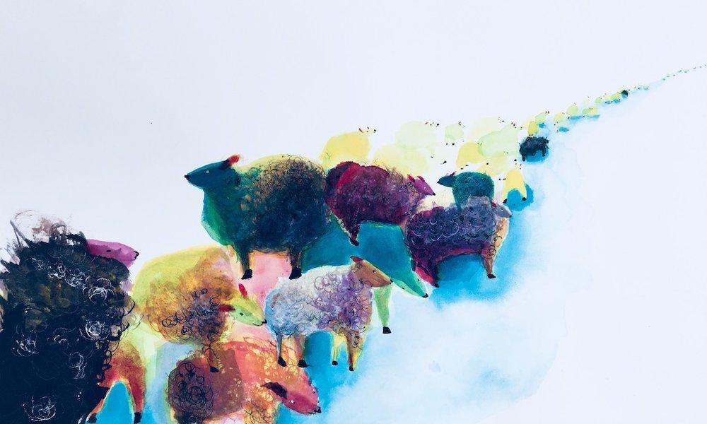 Sheep_Derby.jpg