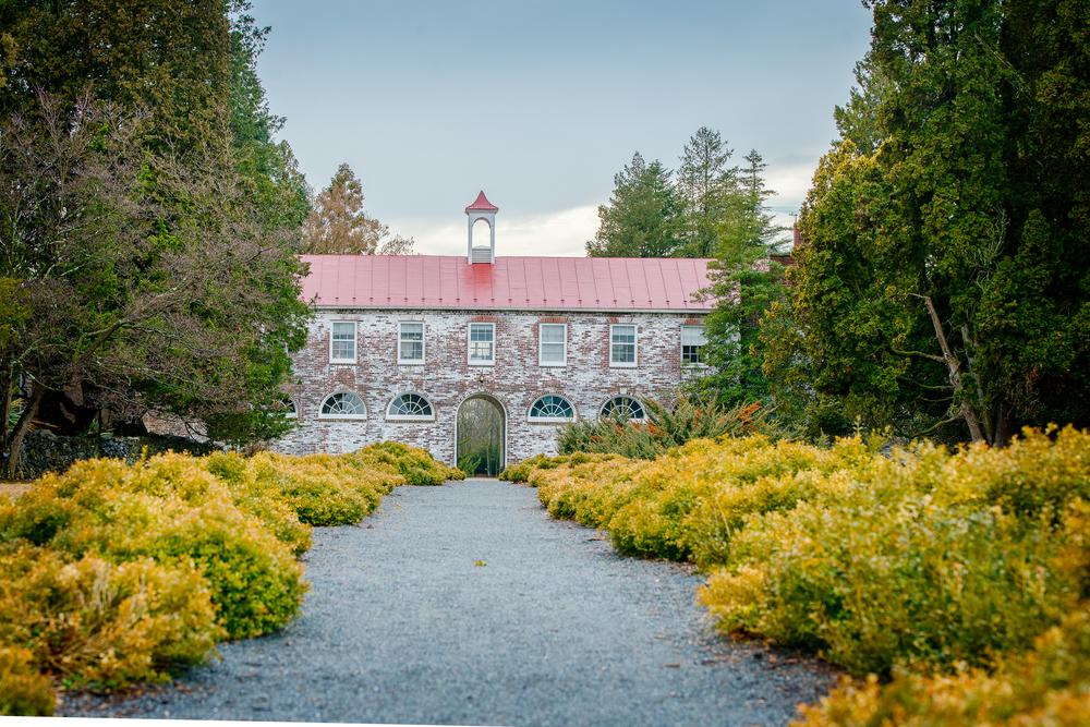 Blandy Farm, State Arboretum - Boyce, VA