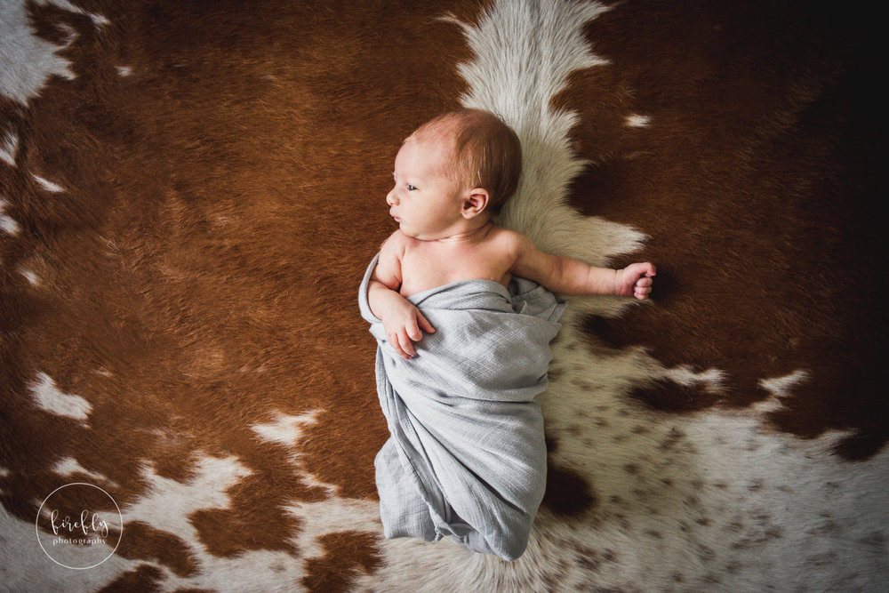 newborn-lifestyle-cow-rug