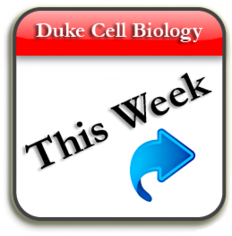 Click on Calendar for Cell Biology Events