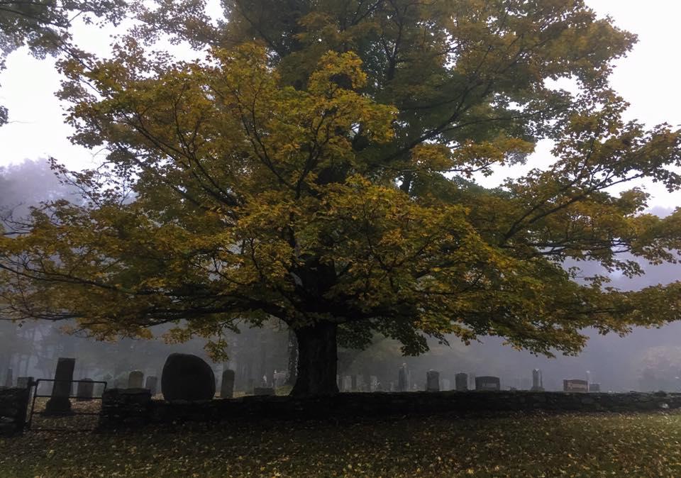 Shaw Cemetery in Mist