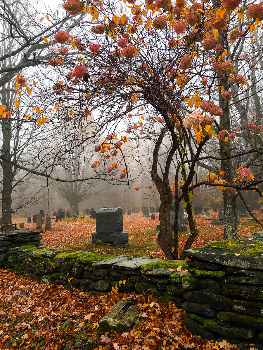 Shaw Cemetery, Late Fall