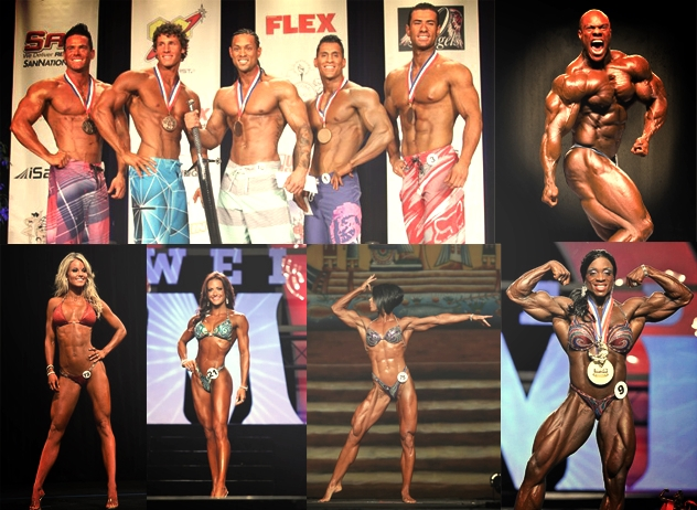 Men's physique, Men's Olympia bodybuilding, Women's bikini, Women's figure, Women's phyique, Ms. Olympia bodybuilding. (Not pictured:fitness categories)