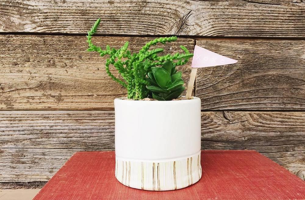 handbuiltflowerpot