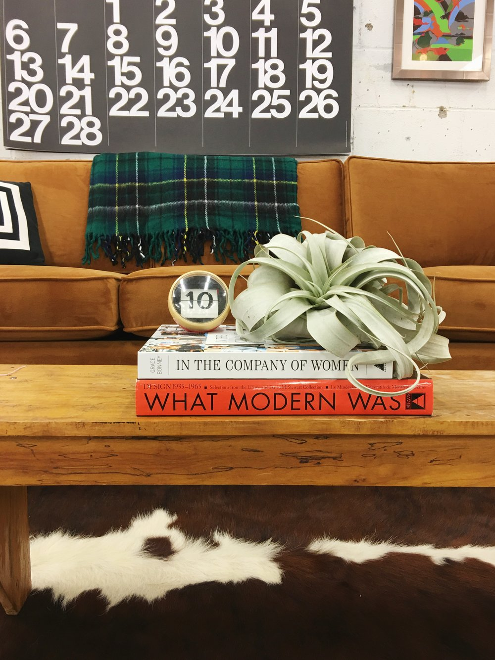vintage modern table vignette with air plant