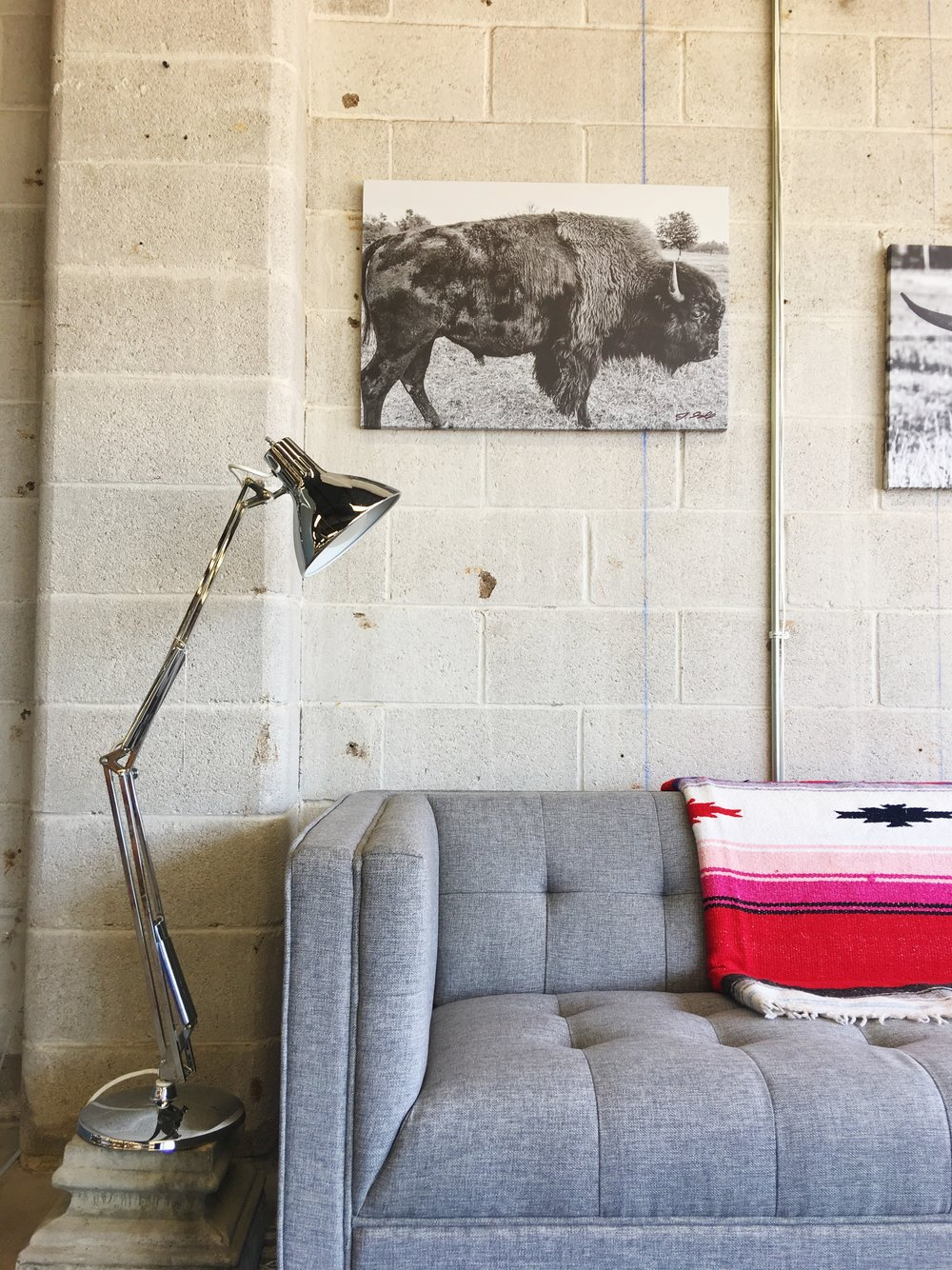 We have bison & long horn prints by a Tulsa photographer available to order.