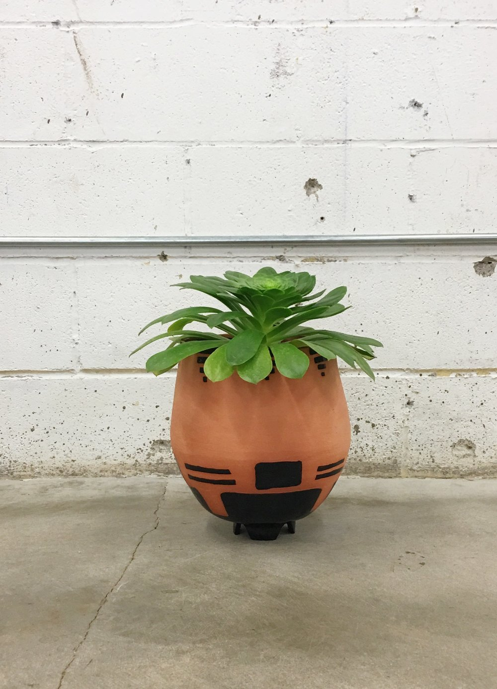 mudhouse studio planter + aeonium