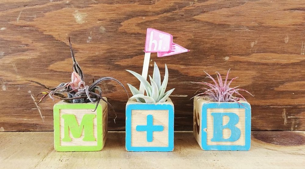 Drill out a hole in wooden children's blocks to make air-plant holders. These are great gifts and look awesome in kid rooms.