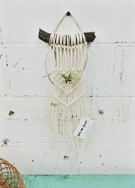 Tasha of  House Sparrow Fine Nesting  loves it when we put air-plants in her macrame pieces.