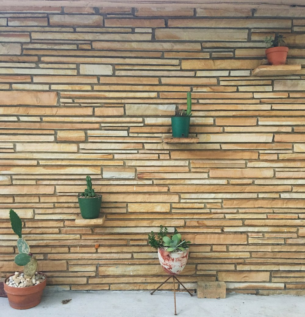 This plant shelf wall is one of my favorite things about our home. Why don't all walls have plant shelves?