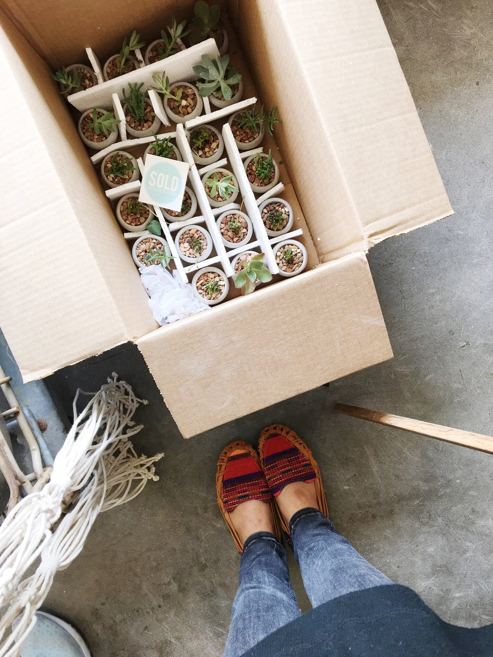 Got to plant up some succulents for the tabletops of a new restaurant in Tulsa. You can always bring in your own planters or find some in our shop, and we will plant them for you for free! It's our joy!