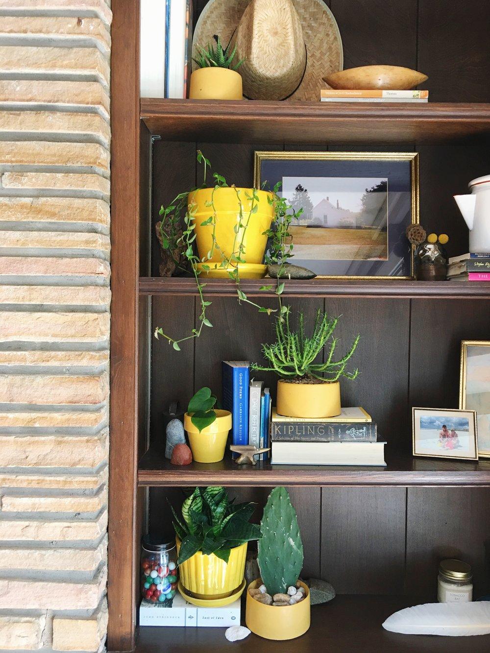 plant shelf vignette.JPG