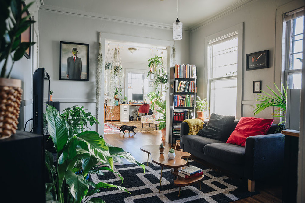colorful plant filled apartment