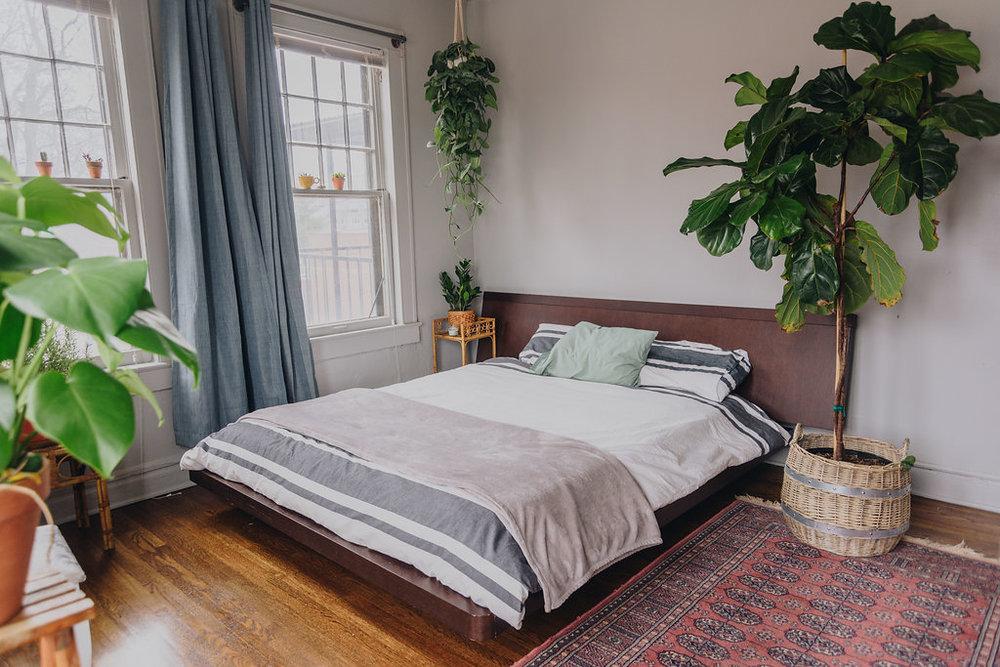 colorful+plantfilled+tulsa+apartment.jpg