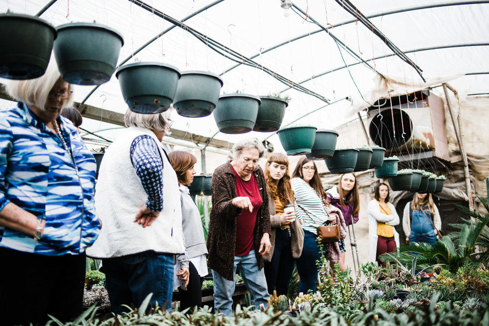 succulent-greenhouse-17