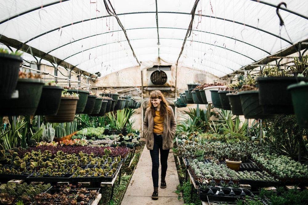 succulent-greenhouse-26