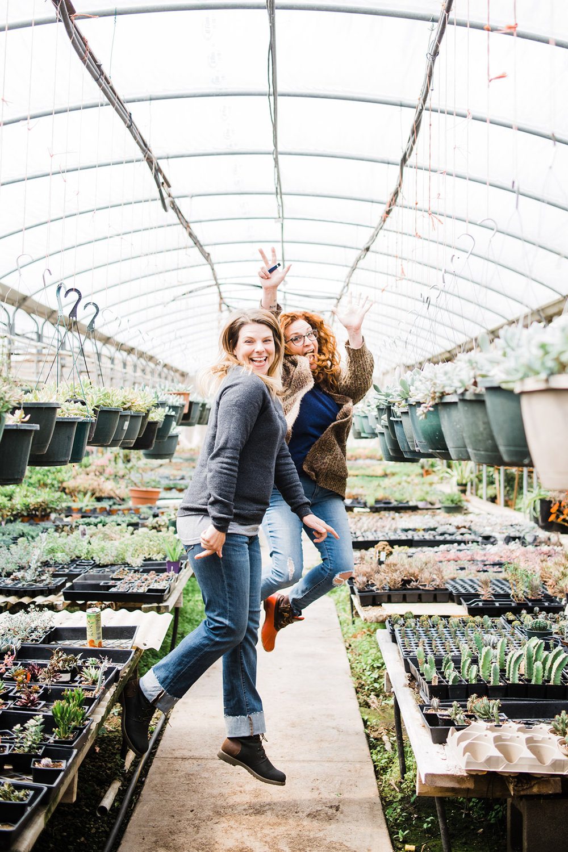 succulent-greenhouse-30