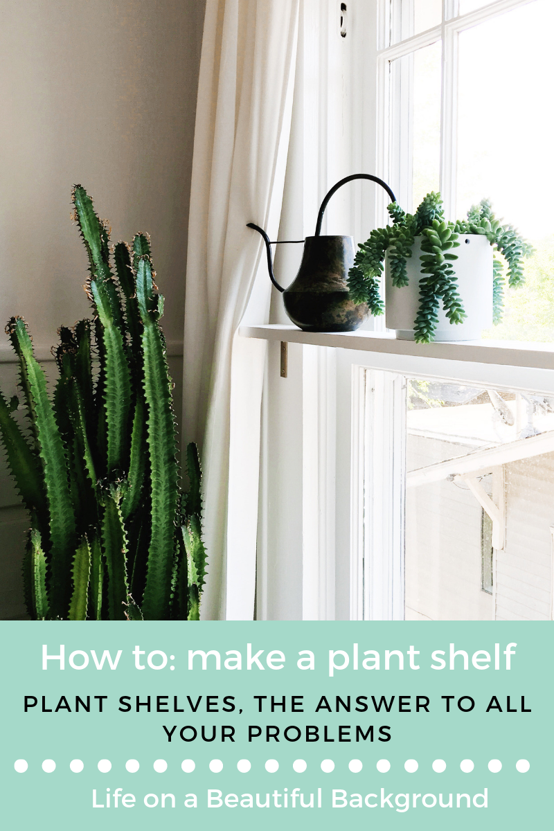 plant-shelves-diy.png