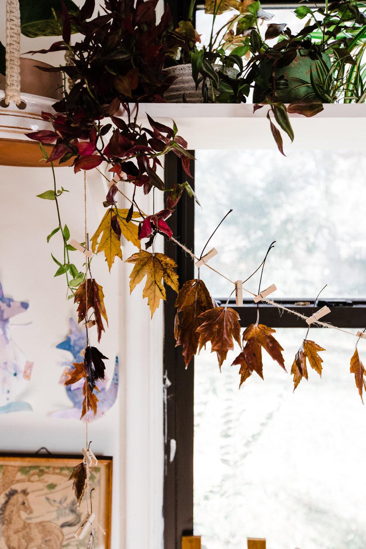 Wax_Leaves-8.jpg