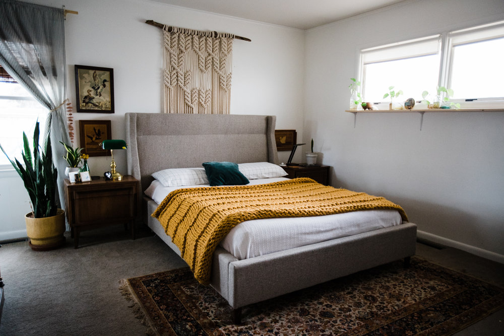 Did you know we carry the    Gus* Modern line    in the shop? We can help get this bed into your life so you too can be comfortable while watching crime TV.