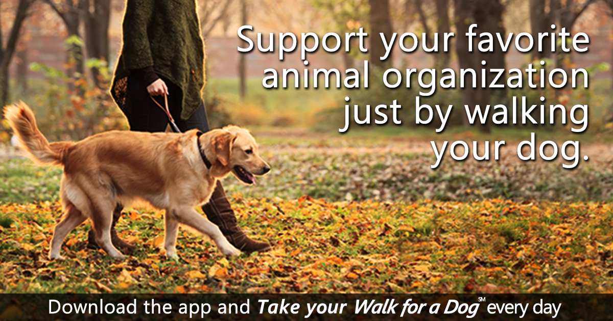 WoofTrax: Dog Powered Fundraising | Take your Walk for a dog
