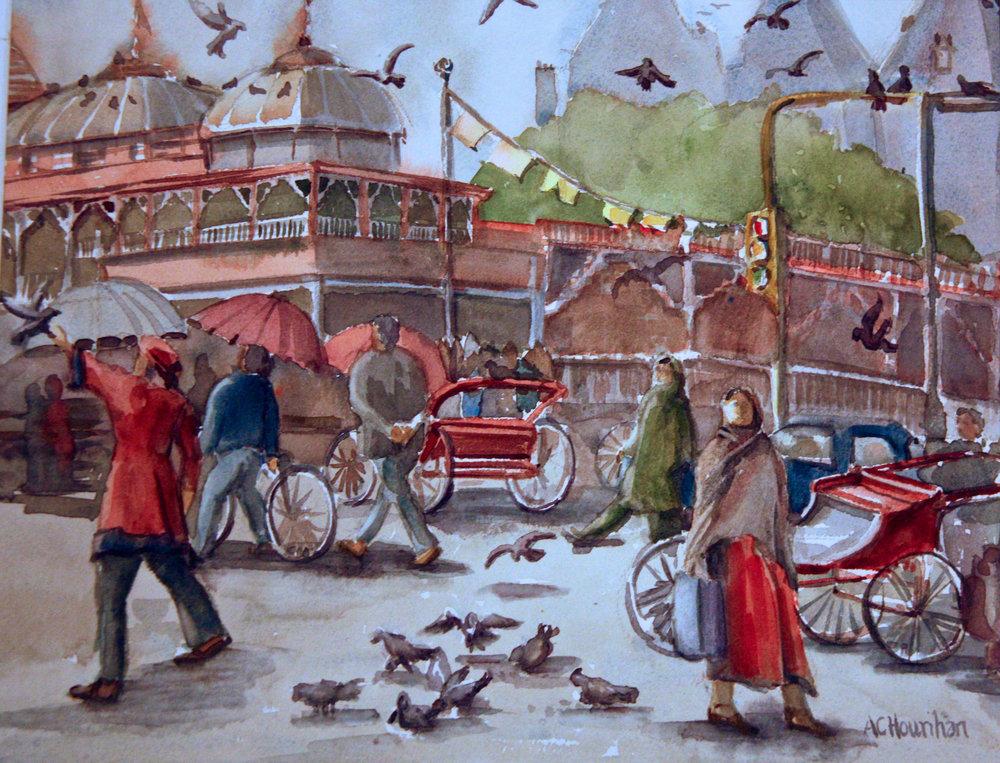 The Bird Hospital-Old Delhi
