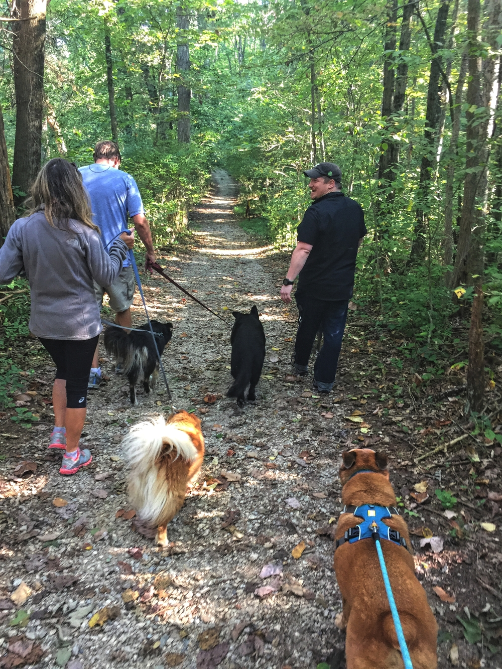 Taking a hike with our pack of dogs.