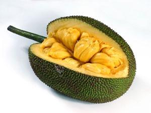 jackfruit-huge-300x225.jpg