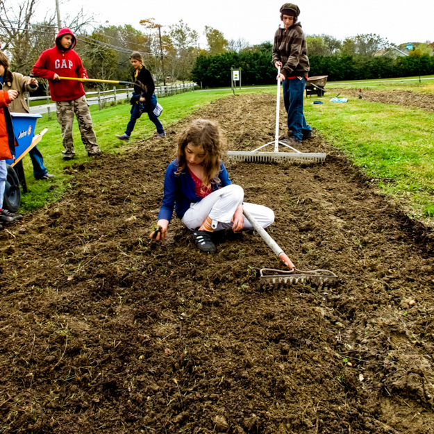 As Part Of Haygroundu0027s Seed To Table Curriculum, Students Dig Into The  Schoolu0027s Organic Gardens, Greenhouses, And Heritage Breed Chicken Coop To  Explore ...