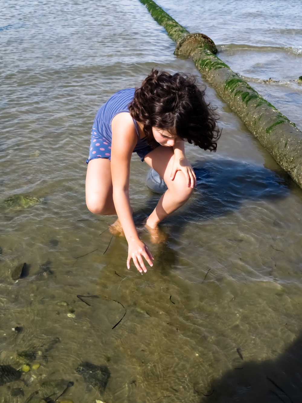 Student carefully picking up a long wristed hermit crab for observation during the marine biodiversity field trip