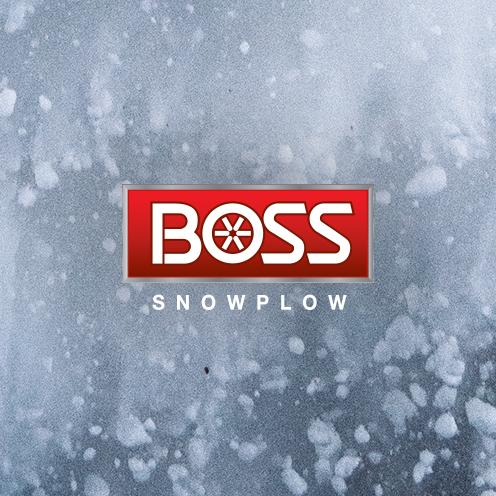 BOSS-client.jpg