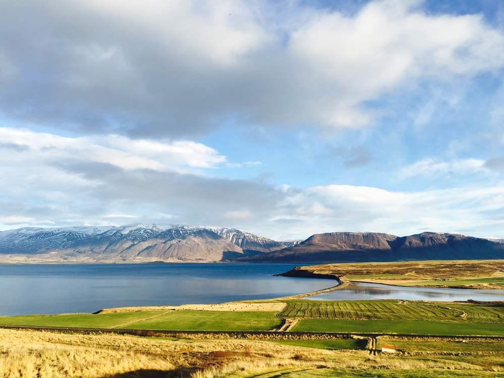 running reykjavík