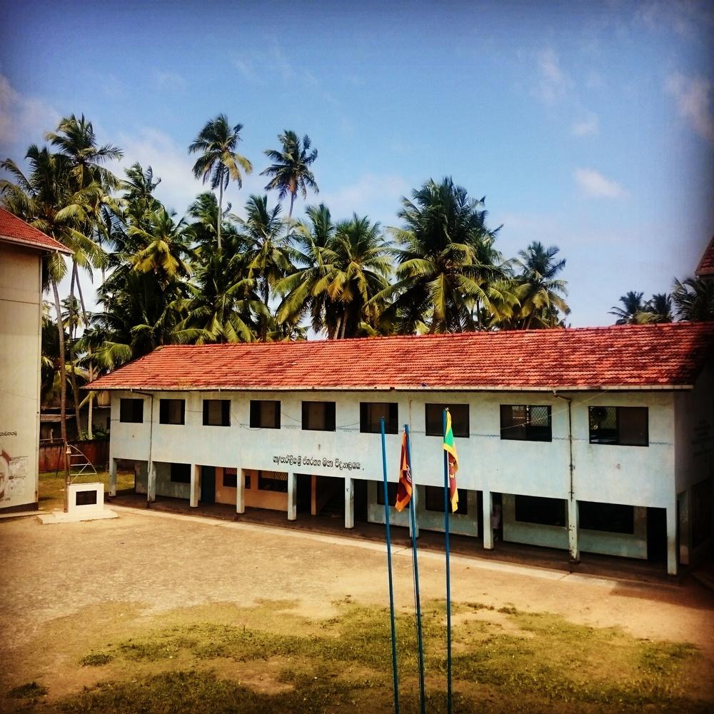English Development Programme