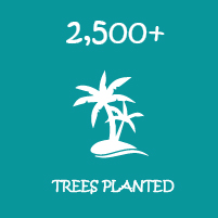 trees planted-01-01.jpg