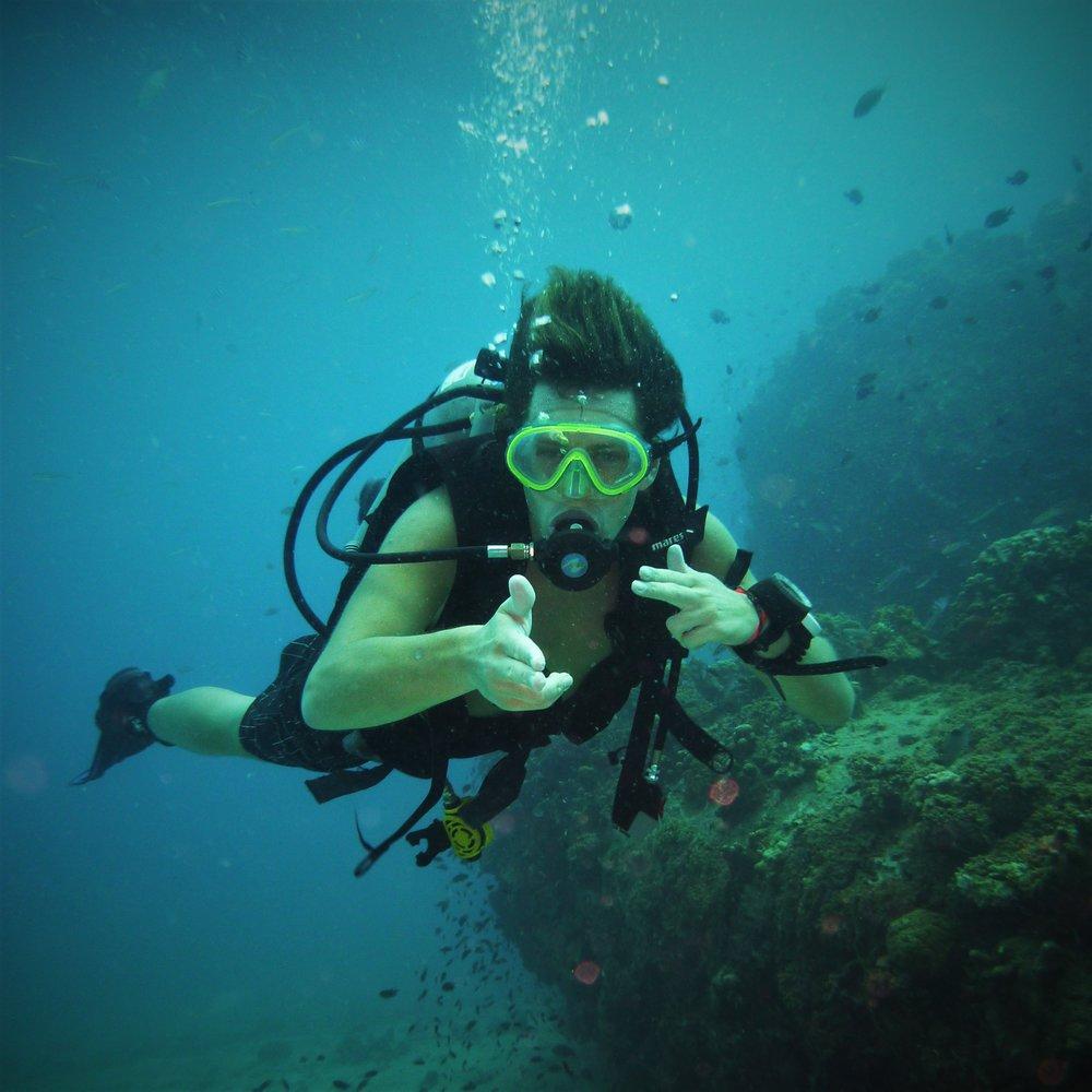 Coral reg.jpg