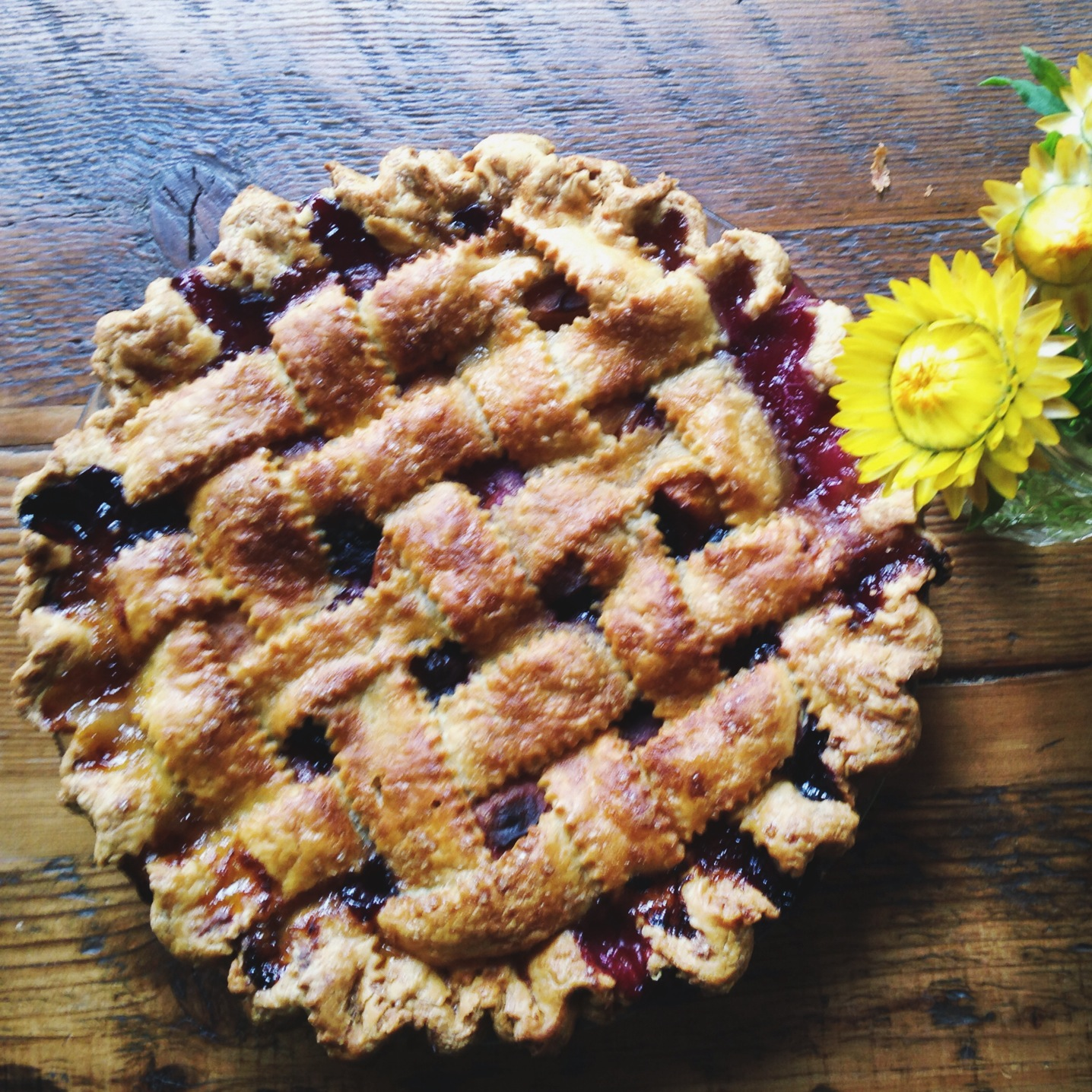 Lauretta Jean's Blueberry Apricot Pie