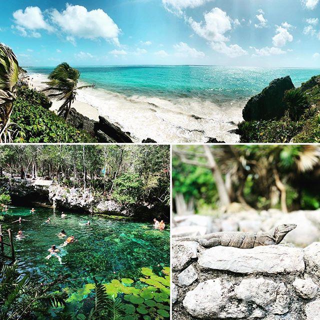 Beautiful day touring Tulum and swimming in a cenote. Viva la 🇲🇽