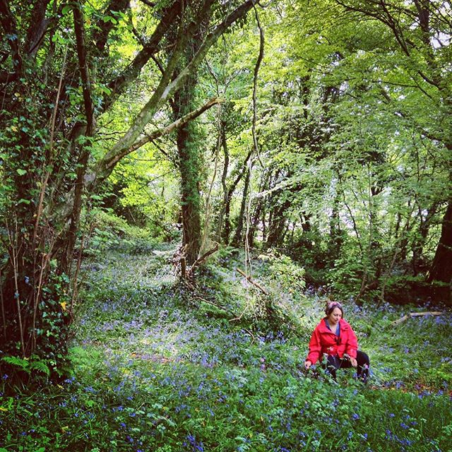 Waiting for you in this magical place, surrounded by nature, beauty and aoibhneas. #prehenwoods #derry #northenireland #nature #forest #happymama #wellbeing
