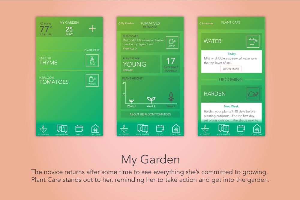 1_My_Garden.jpg