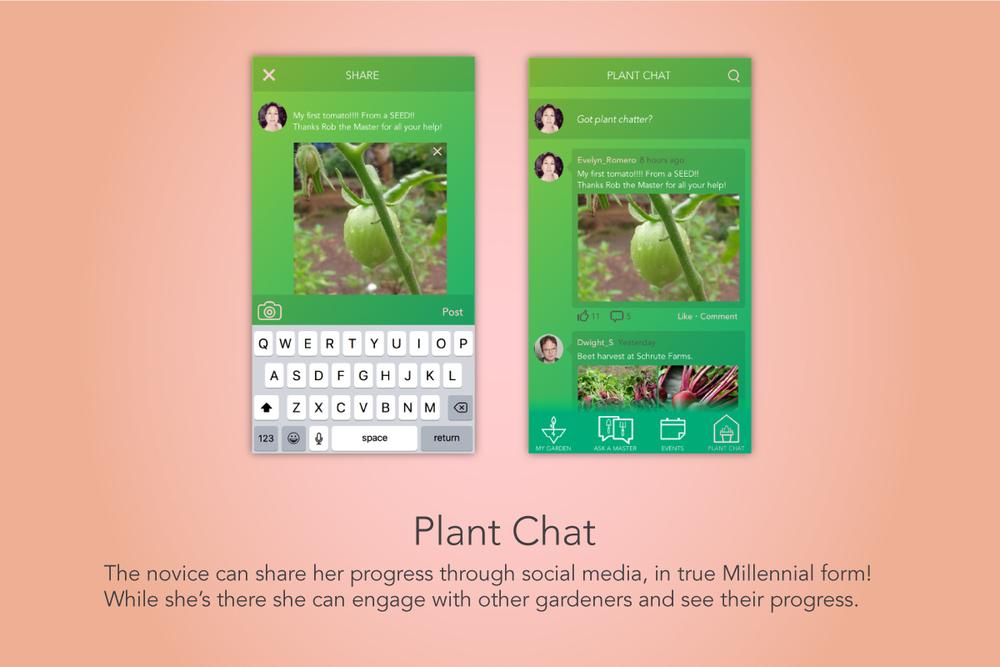 4_Plant_Chat.jpg