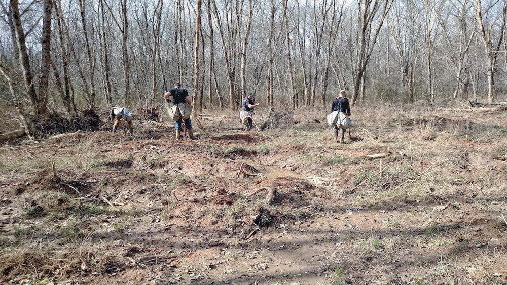 Work Crew Planting Trees.jpg