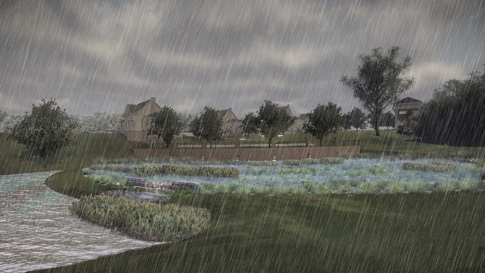 83 PER REV w Wetland2_003 w rain.jpg