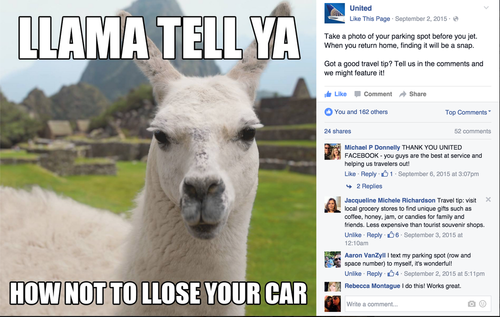 Llama tell ya.png